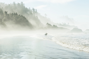 Picture of Catching the Morning Surf
